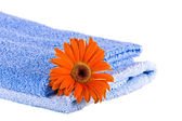 Blue soft fluffy towels, Flower — Stock Photo