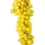 la rama de uvas aislado, en un blanco — Foto de Stock