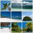 Beautiful tropic lifestyle theme collage — Stock Photo #27849687