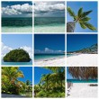 Stockfoto: Beautiful tropic landscapes theme collage