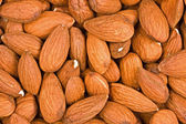Background from fresh nuts — Stock Photo
