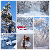 Snow-covered winter landscapes — Stock Photo