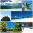 Beautiful tropic lifestyle collage — Stock Photo