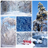Winter landscapes — Stock Photo