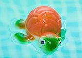 Turtle in bad badkamer spetteren in water — Stockfoto