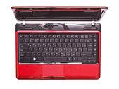 Modern bright laptop top view — Stock Photo