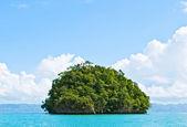 яркий зеленый остров в середине моря — Стоковое фото