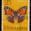 YUGOSLAVIA - CIRCA 1964: A stamp printed in Yugoslavia shows Spremo milenkovic courvoisier S.A. Vanessa io, circa 1964 — Stock Photo