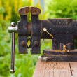 Stock Photo: Clamp on the green