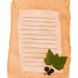 Black currant on an old paper — Stock Photo