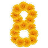 EIGHT from bright dandelion on the white — Stock Photo