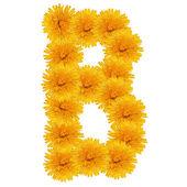 B carta de dandelion brilhante branco — Fotografia Stock