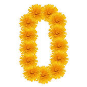 Letter O from bright dandelion on the white — Stock Photo