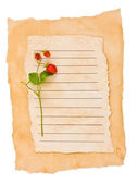 Wild strawberry on an old paper on the white — Stock Photo