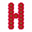 Letter H from red flowers — Stock Photo #27951337