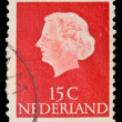 Stock Photo: NETHERLANDS - CIRCA 1954: A stamp printed in the Netherlands shows image of Queen Juliana, series, circa 1954