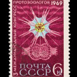 Stock Photo: USSR - CIRC1969: stamp printed in USSR, shows 3 international congress of protozoologists, circ1969