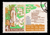 USSR - CIRCA 1980: A stamp printed in the USSR, shows cattle breeding, circa 1980 — Stock Photo