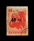 BULGARIE - CIRCA 1977: Stamps printed in Bulgarie shows Berries, circa 1977 — Foto de Stock