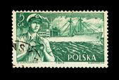 POLSKA - CIRCA 1964: A stamp printed in theshows St.Kukaszewski B.Brandt, circa 1964 — Stock Photo