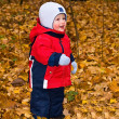 The one-year-old kid in autumn wood — Stock Photo