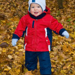 The one-year-old kid in autumn wood — Stock Photo #28020571