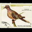 CUBA - CIRCA 1970: A stamp printed in the CUBA, shows Rabiche,  circa 1970 — Stock Photo