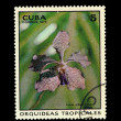 Stock Photo: CUB- CIRC1973: stamp printed in CUBA, shows VandGilbert Frobulet, circ1973