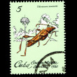 CUBA - CIRCA 1980: A stamp printed in the CUBA, shows Odontocera josemartii,  circa 1980 — Zdjęcie stockowe