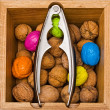 Walnuts in wooden box with metal nippers — Stock Photo #28028409