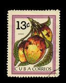 CUBA - CIRCA 1970: A stamp printed in the CUBA, shows Mango, circa 1970 — Stock Photo