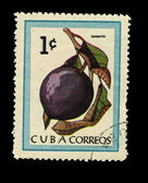 CUBA - CIRCA 1970: A stamp printed in the CUBA, shows Caimito, circa 1970 — Stock Photo