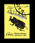 CUBA - CIRCA 1980: A stamp printed in the CUBA, shows Entomofauna Homophileurus cubanus, circa 1980 — Stock Photo