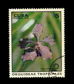 CUBA - CIRCA 1973: A stamp printed in the CUBA, shows Vanda Gilbert Frobulet, circa 1973 — Stock Photo
