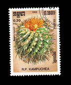 CAMBODIA - CIRCA 1986: A stamp printed in Cambodia shows Parodia maasii, circa 1986. — Stock Photo