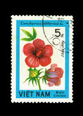 Stamp printed by Viet Nam, shows Carchorus olitorius, circa 1980 — Stock Photo