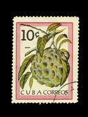 CUBA - CIRCA 1980: A stamp printed in the CUBA, shows anon, circa 1980 — Stock Photo