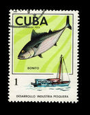 CUBA - CIRCA 1975: A stamp printed in the CUBA, shows desarrollo industria pesquera, circa 1975 — Stock Photo