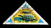 MONGOLIA - CIRCA 1977: stamp printed in Mongolia shows mongolemys elegans, circa 1977 — Stock Photo