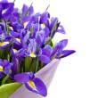 Bouquet of irises — Stock Photo #28851579