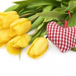 Yellow tulip and the heart — Stock Photo