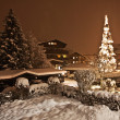 Fir-tree in a snow-covered yard of the Austrian house — Foto de Stock