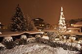 Spar-boom in een tuin sneeuw bedekte van het oostenrijkse huis — Stockfoto