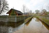 Spring flood — Stock Photo