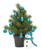 Christmas tree in a pot — Foto de Stock