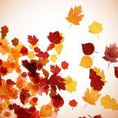 осенью фоне — Cтоковый вектор