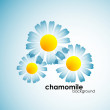 Chamomile background — Stock Vector