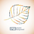 Autumn leaf background — Stock Vector #34003999