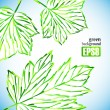 Green leaf background — Stock Vector