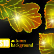 Stock Vector: Autumn leaf background